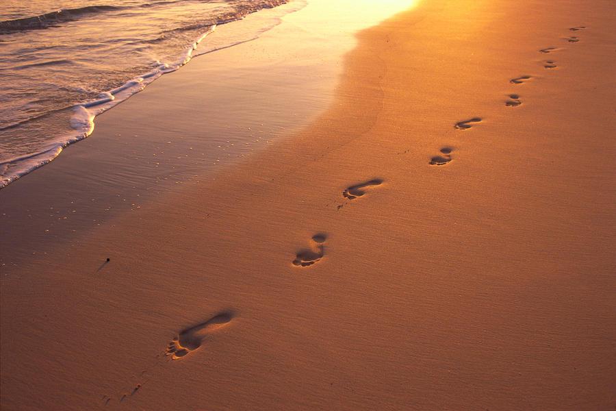 Risultati immagini per footprints