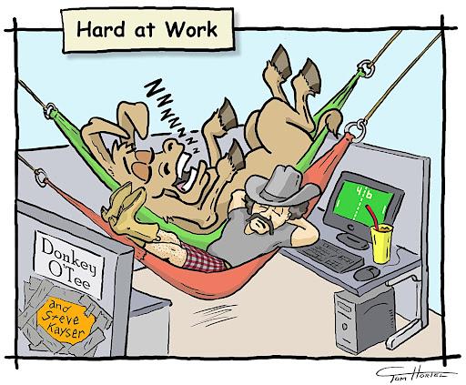 Steve-and-Donkey-Hammocks5